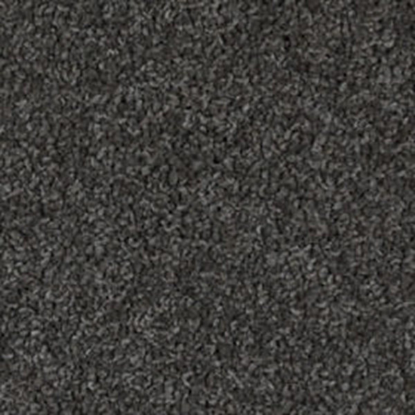 Carpet Victoria Carpets Heaven On Earth In Floorings Rockdale