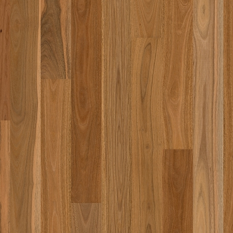 QUICK-STEP READYFLOR SPOTTED GUM 1STRIP MATT BRUSHED
