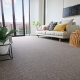EC.GROUP SOLUTION DYED NYLON CARPETS DERWENT VALLEY